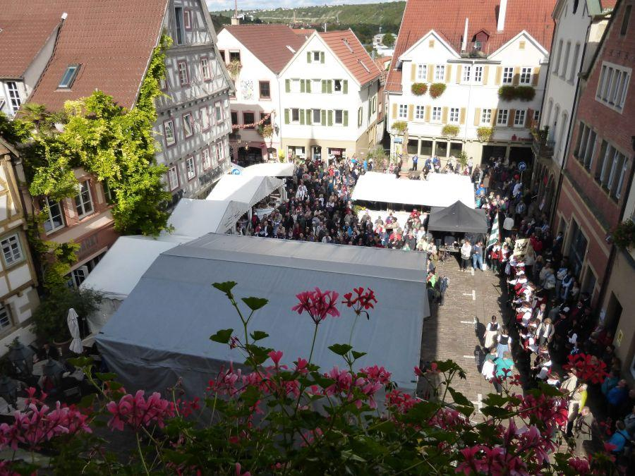 BL01-Besigheim-Market-Place-from-above